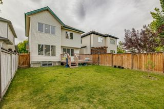 Photo 40: 18 Copperfield Crescent SE in Calgary: Copperfield Detached for sale : MLS®# A1141643