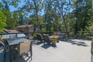 Photo 47: 4228 Parkside Pl in : SE Mt Doug House for sale (Saanich East)  : MLS®# 881486