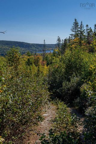 Photo 11: 2014 Myra Road in Porters Lake: 31-Lawrencetown, Lake Echo, Porters Lake Vacant Land for sale (Halifax-Dartmouth)  : MLS®# 202125407