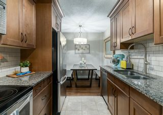 Photo 7: 404 507 57 Avenue SW in Calgary: Windsor Park Apartment for sale : MLS®# A1112895