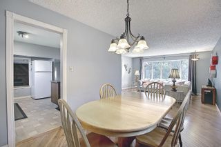 Photo 14: 9832 187 Street in Edmonton: Zone 20 House for sale : MLS®# E4253744
