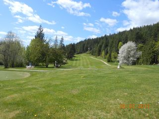 Photo 8: Lot 352 Castle Heights in Anglemont: North Shuswap Land Only for sale (Shuswap)