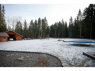 """Photo 16: 130 BORLAND Drive: 150 Mile House House for sale in """"BORLAND VALLEY"""" (Williams Lake (Zone 27))  : MLS®# N241052"""