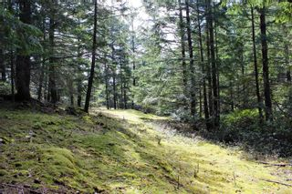 Photo 24: Lot A Armand Way in : GI Salt Spring Land for sale (Gulf Islands)  : MLS®# 871175