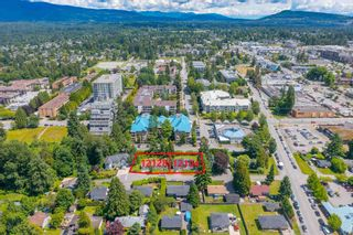 Photo 7: 12128 GARDEN Street in Maple Ridge: West Central House for sale : MLS®# R2599609