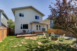 Photo 29: 55 Thornbird Way SE: Airdrie Detached for sale : MLS®# A1114077