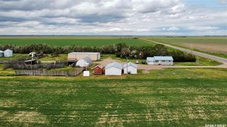 Photo 34: Tomecek Acreage in Rudy: Residential for sale (Rudy Rm No. 284)  : MLS®# SK860263