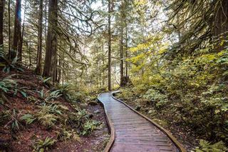 """Photo 3: 221 2640 FROMME Road in North Vancouver: Lynn Valley Condo for sale in """"TREELYNN"""" : MLS®# R2562547"""