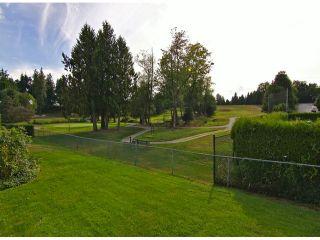 "Photo 13: 4 11438 BEST Street in Maple Ridge: Southwest Maple Ridge Townhouse for sale in ""FAIRWAY ESTATES"" : MLS®# V1025313"