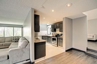 Photo 19: 68 Bermondsey Way NW in Calgary: Beddington Heights Detached for sale : MLS®# A1152009