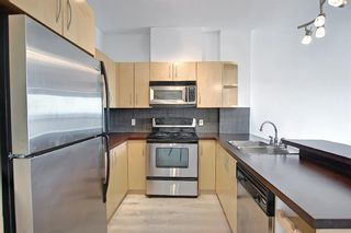 Photo 9: 202 69 Springborough Court SW in Calgary: Springbank Hill Apartment for sale : MLS®# A1123193