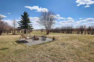 Photo 29: 322069 8 Street E: Rural Foothills County Detached for sale : MLS®# A1096731