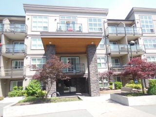 Photo 1: 115 30525 CARDINAL AVENUE in Abbotsford: Abbotsford West Condo for sale : MLS®# R2078261