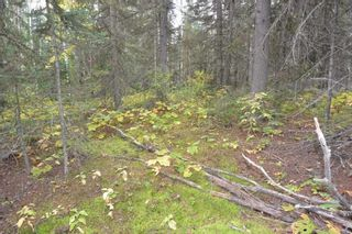 """Photo 14: Lot 8 GLACIER VIEW Road in Smithers: Smithers - Rural Land for sale in """"Silvern Estates"""" (Smithers And Area (Zone 54))  : MLS®# R2410914"""