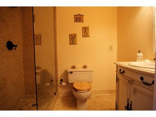 """Photo 7: 502 410 CARNARVON Street in NEW WEST: Downtown NW Condo for sale in """"CARNARVON PLACE"""" (New Westminster)  : MLS®# V1127823"""