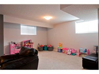 Photo 29: 104 Mahogany Court SE in Calgary: Mahogany House for sale : MLS®# C4059637