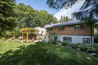Photo 24: 3367 BAIRD Road in North Vancouver: Lynn Valley House for sale : MLS®# R2590561