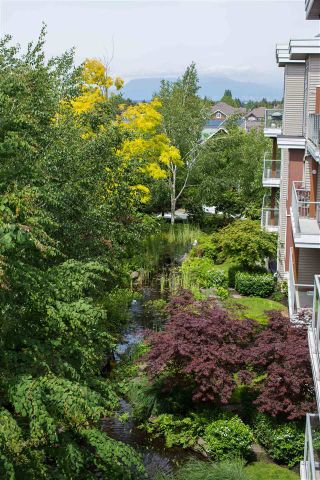 Photo 7: 432 5700 ANDREWS ROAD in RIVERS REACH: Steveston South Home for sale ()  : MLS®# R2070613