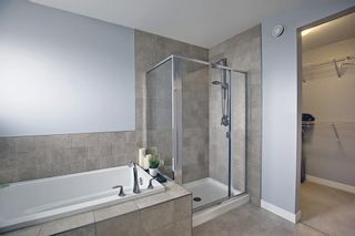 Photo 29: 133 WALDEN Square SE in Calgary: Walden Detached for sale : MLS®# A1101380