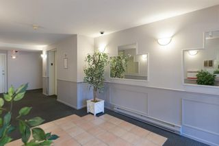 """Photo 2: 211 295 SCHOOLHOUSE Street in Coquitlam: Maillardville Condo for sale in """"Chateau Royale"""" : MLS®# R2237946"""
