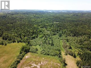 Photo 9: 100 Mount Pleasant Road in St. George: Vacant Land for sale : MLS®# NB059440