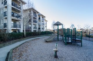 "Photo 30: D401 8929 202ND Street in Langley: Walnut Grove Condo for sale in ""THE GROVE"" : MLS®# F1428782"