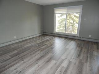 Photo 14:  in Edmonton: Zone 29 Condo for sale : MLS®# E4248069