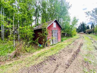 Photo 37: 454064 RGE RD 275: Rural Wetaskiwin County House for sale : MLS®# E4246862