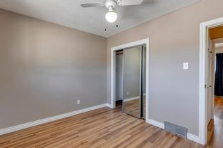 Photo 15: 302 Whitney Crescent SE in Calgary: Willow Park Detached for sale : MLS®# A1146432