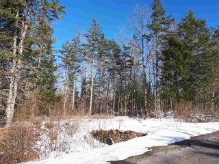 Photo 2: LOT Stronach Mountain Road in Forest Glade: 400-Annapolis County Vacant Land for sale (Annapolis Valley)  : MLS®# 201924165
