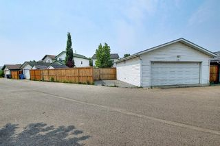 Photo 46: 94 Erin Meadow Close SE in Calgary: Erin Woods Detached for sale : MLS®# A1135362