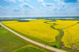 Photo 5: 5901 50 Avenue: Rural Red Deer County Rural Land/Vacant Lot for sale : MLS®# E4232886