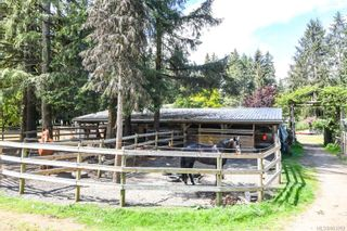 Photo 50: 4737 Gordon Rd in : CR Campbell River North House for sale (Campbell River)  : MLS®# 863352
