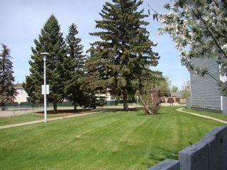 Photo 32: 33 AMBERLY Court in Edmonton: Zone 02 Townhouse for sale : MLS®# E4247995