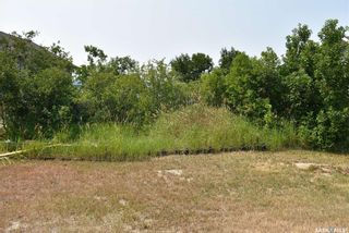 Photo 3: 16 Aaron Drive in Echo Lake: Lot/Land for sale : MLS®# SK863960