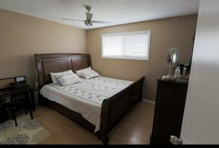 Photo 7: 5411 54 Street NE in Calgary: Falconridge Detached for sale : MLS®# A1071559