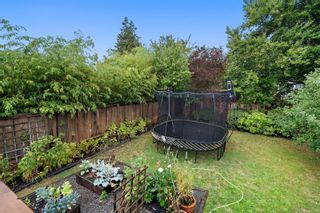 Photo 42: 3111 Service St in : SE Camosun House for sale (Saanich East)  : MLS®# 856762