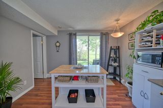 Main Photo: 4112 1620 70 Street SE in Calgary: Applewood Park Apartment for sale : MLS®# A1130673