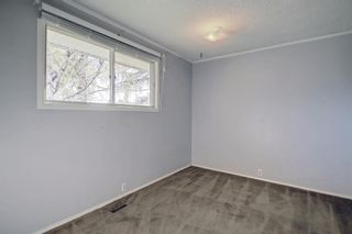 Photo 25: 132 Mardale Crescent NE in Calgary: Marlborough Detached for sale : MLS®# A1146772