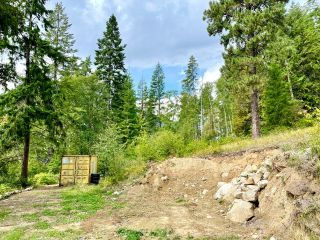 Photo 22: 1969 SANDY ROAD in Castlegar: Vacant Land for sale : MLS®# 2461033