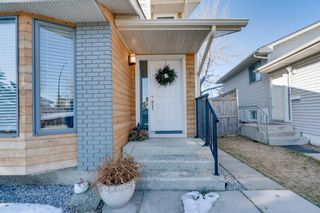 Photo 44: 192 Rivervalley Crescent SE in Calgary: Riverbend Detached for sale : MLS®# A1099130