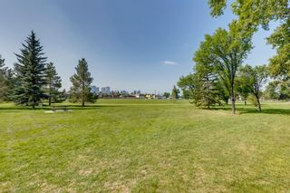 Photo 4: 452 18 Avenue NE in Calgary: Winston Heights/Mountview Semi Detached for sale : MLS®# A1130830