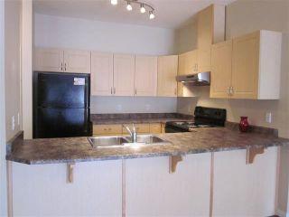 Photo 8: 413 4304 139 Avenue in Edmonton: Zone 35 Condo for sale : MLS®# E4249649