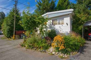 Photo 16: 38 9132 NW 120TH Street in Surrey: West Newton Manufactured Home for sale : MLS®# R2402637