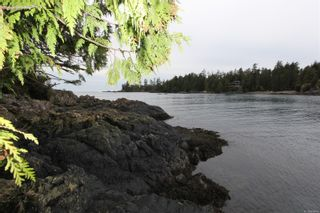 Photo 4: 1172 Coral Way in : PA Ucluelet Land for sale (Port Alberni)  : MLS®# 866410