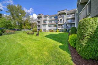 "Photo 15: 313 5700 200 Street in Langley: Langley City Condo for sale in ""Langley Village Apartments"" : MLS®# R2574997"
