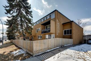Photo 30: 211 7007 4A Street SW in Calgary: Kingsland Apartment for sale : MLS®# A1086391