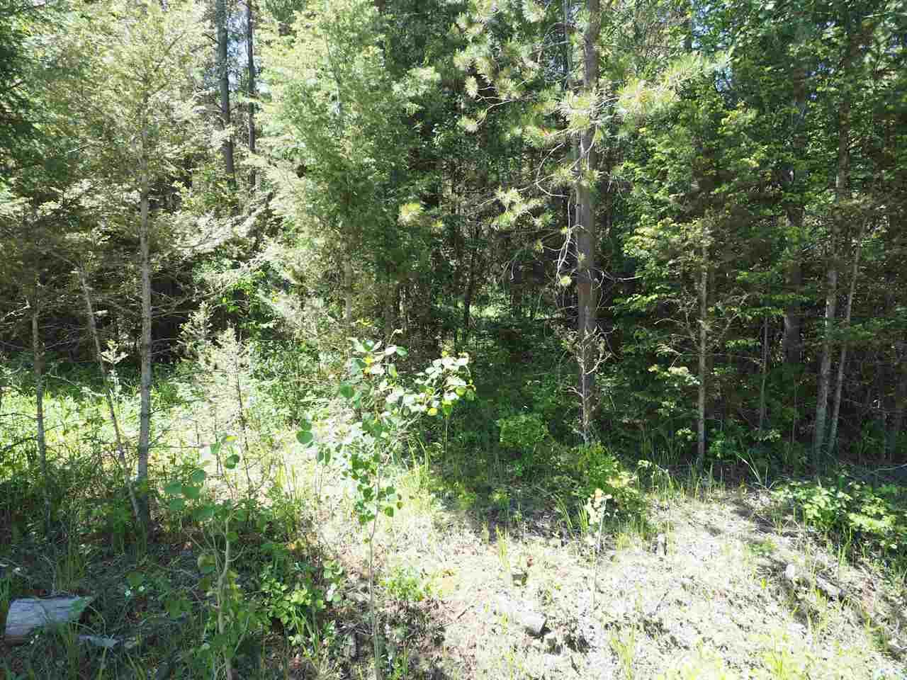Photo 1: Photos: LOT 9 EASZEE Drive in 108 Mile Ranch: 108 Ranch Land for sale (100 Mile House (Zone 10))  : MLS®# R2467252