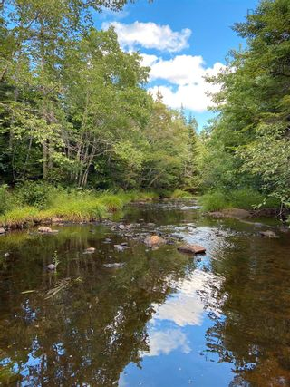 Photo 7: Lot Highway 4 False Bay Brook in River Bourgeois: 305-Richmond County / St. Peters & Area Vacant Land for sale (Highland Region)  : MLS®# 202123291