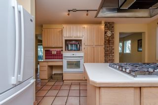 Photo 17: 41056 BELROSE Road in Abbotsford: Sumas Prairie House for sale : MLS®# R2039455